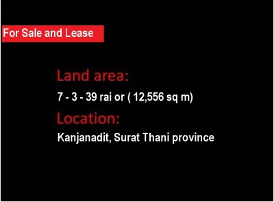 Land for sale and lease View1